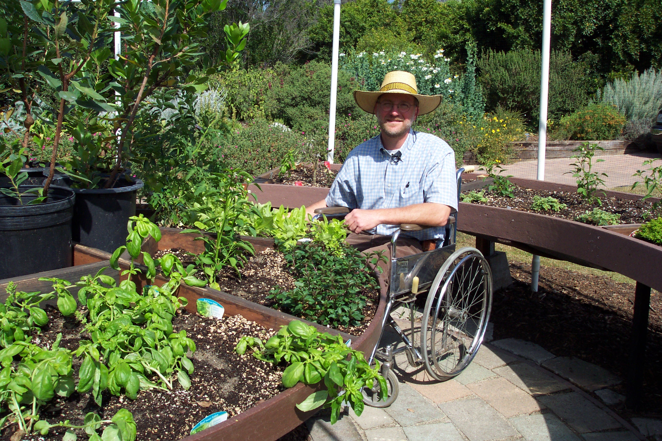 Design For Raised Garden Beds Wheelchair Accessible